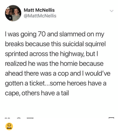 Homie, Memes, and Heroes: Matt McNellis  @MattMcNellis  I was going 70 and slammed on my  breaks because this suicidal squirrel  sprinted across the highway, but l  realized he was the homie because  ahead there was a cop and I would've  gotten a ticket...some heroes have a  cape, others have a tail 😩