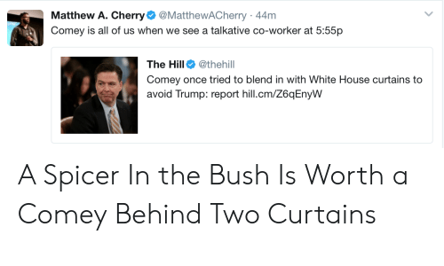 White House, Curtains, and House: Matthew A. Cherry@MatthewACherry 44m  Comey is all of us when we see a talkative co-worker at 5:55p  The Hill @thehill  Comey once tried to blend in with White House curtains to  avoid Trump: report hill.cm/Z6qEnyW A Spicer In the Bush Is Worth a Comey Behind Two Curtains