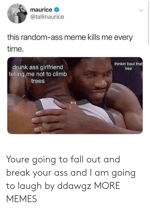 Ass, Dank, and Drunk: maurice  @tallmaurice  this random-ass meme kills me every  time.  thinkin bout that  tree  drunk ass girlfriend  telling me not to climb  trees Youre going to fall out and break your ass and I am going to laugh by ddawgz MORE MEMES
