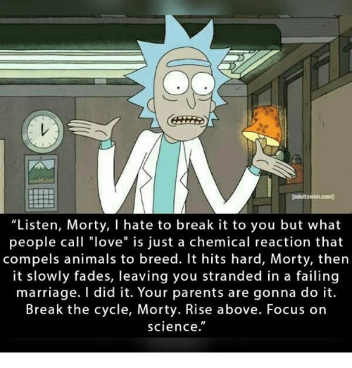 Mav Ladultswimcom Listen Morty L Hate To Break It To You But What