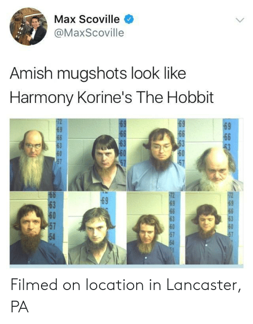 Hobbit, The Hobbit, and Amish: Max Scoville  @MaxScoville  Amish mugshots look like  Harmony Korine's The Hobbit  69  69  63  60  63  60  54 Filmed on location in Lancaster, PA
