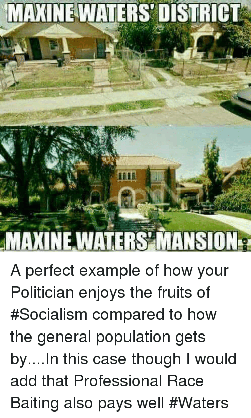 Image result for maxine waters house
