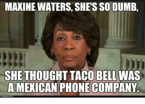maxine-waters-shes-so-dumb-she-thought-taco-bell-was-15754307.png
