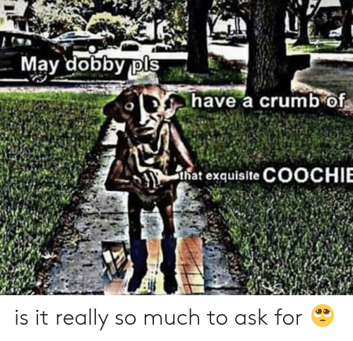 Ask, Nat, and May: May dobby pls  have a crumb of  nat exquisite COOCHIE is it really so much to ask for 🥺