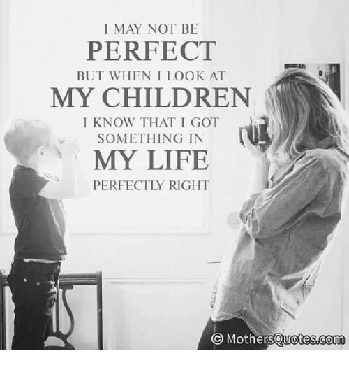 May Not Be Perfect But When I Look At My Children I Know That I Got
