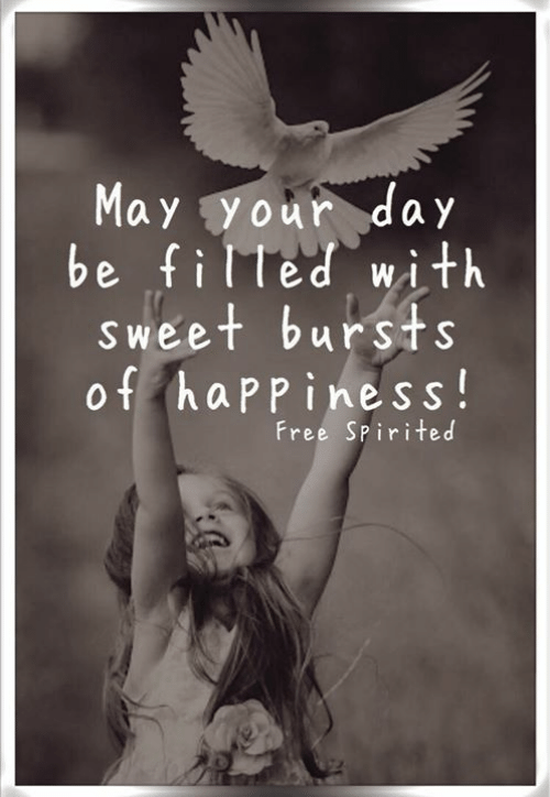 Memes, Free, and Happiness: May your day  be filled with  S weet bursts  of happiness!  Free Spirited