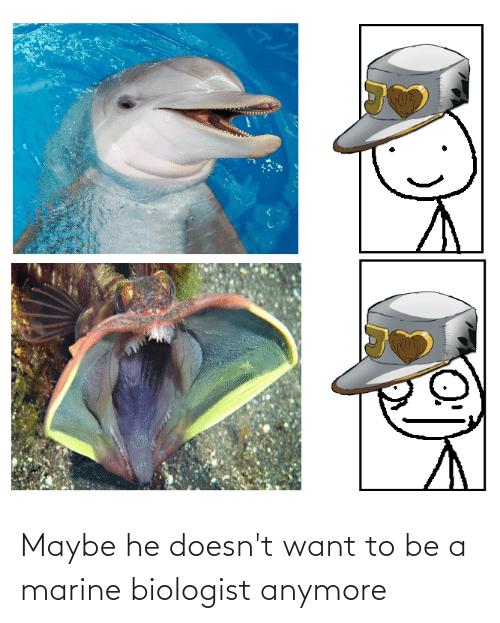 Marine, Maybe, and Marine Biologist: Maybe he doesn't want to be a marine biologist anymore