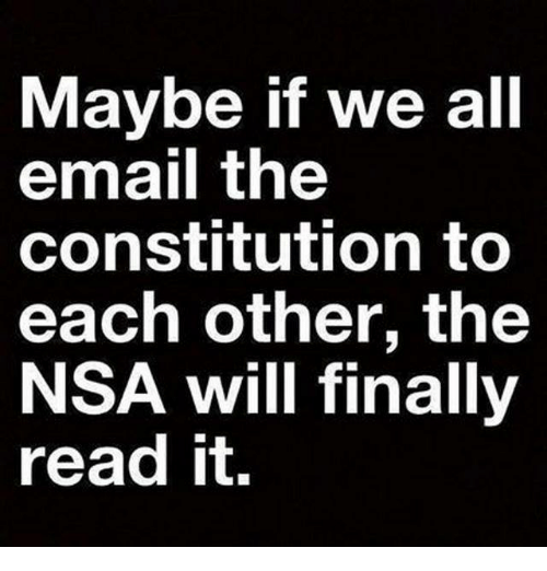 Memes, 🤖, and Nsa: Maybe if we all  email the  constitution to  each other, the  NSA will finally  read it.