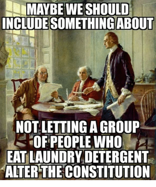 Laundry, Memes, and Constitution: MAYBE  WE  SHOULD  INCLUDESOMETHINGABOUT  NOT LETTING A GROUP-  OFPEOPLE WHO  EAT LAUNDRY DETERGENT  ALTER THE CONSTITUTION