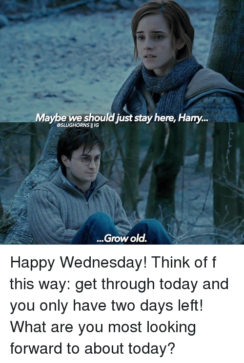 Memes, Wednesday, and 🤖: Maybe we should just stay here. Hany...  @SLUGHORNSHIIG  Grow old. Happy Wednesday! Think of f this way: get through today and you only have two days left! What are you most looking forward to about today?