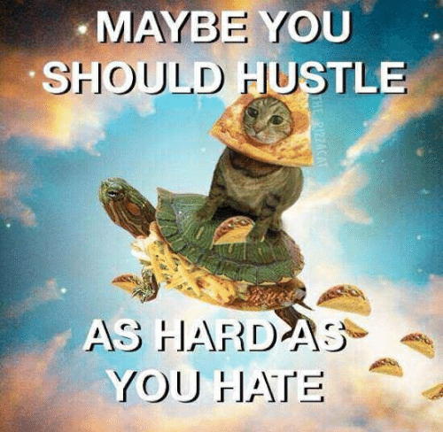 You, Hustle, and Hate: MAYBE YOU  SHOULD HUSTLE  AS HARDAS  YOU HATE  THE PIZZACAT