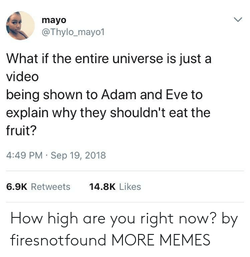 Adam and Eve, Dank, and How High: mayo  @Thylo_mayo1  What if the entire universe is just a  video  being shown to Adam and Eve to  explain why they shouldn't eat the  fruit?  4:49 PM Sep 19, 2018  6.9K Retweets  14.8K Likes How high are you right now? by firesnotfound MORE MEMES