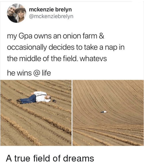 Life, True, and Onion: mckenzie brelyn  @mckenziebrelyn  my Gpa owns an onion farm &  occasionally decides to take a nap in  the middle of the field. whatevs  he wins @ life A true field of dreams