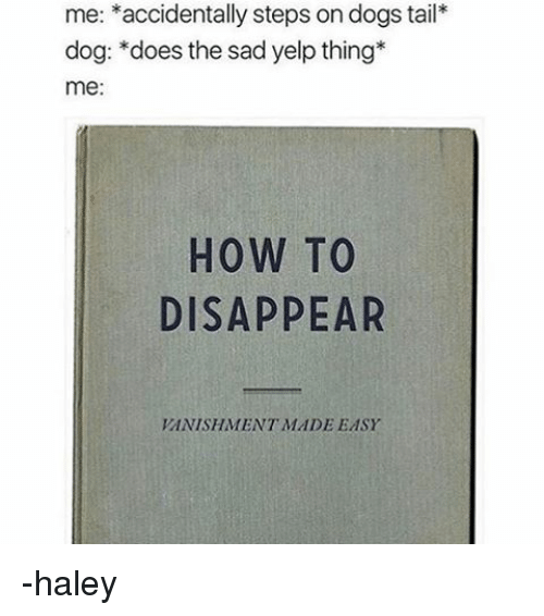 Memes, Yelp, and 🤖: me: accidentally steps on dogs tail  dog: does the sad yelp thing  me:  HOW TO  DISAPPEAR  VANISHMENT MADE EASY -haley