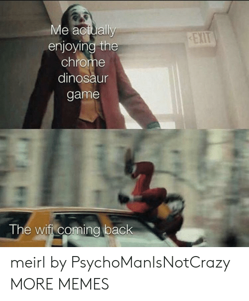Chrome, Dank, and Dinosaur: Me actually  enjoying the  chrome  EXIT  dinosaur  game  The wifi coming back meirl by PsychoManIsNotCrazy MORE MEMES