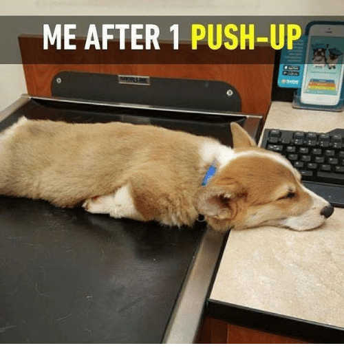 Image result for push up memes