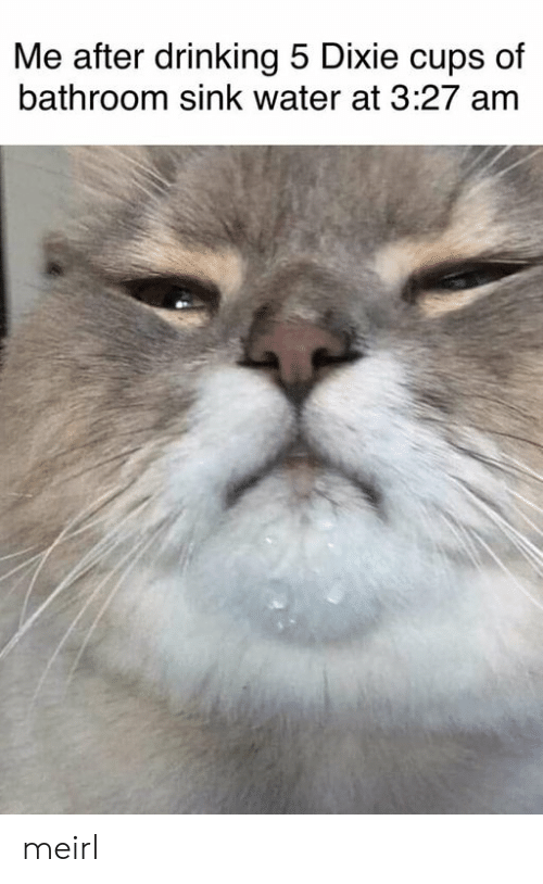 Drinking, Water, and MeIRL: Me after drinking 5 Dixie cups of  bathroom sink water at 3:27 am meirl