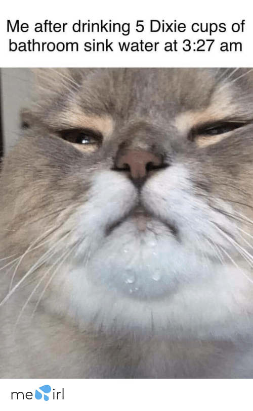 Drinking, Water, and Dixie Cups: Me after drinking 5 Dixie cups of  bathroom sink water at 3:27 amm me💦irl