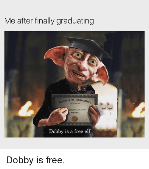 me-after-finally-graduating-ot-gradnatia-dtplema-dobby-is-a-25272137.png
