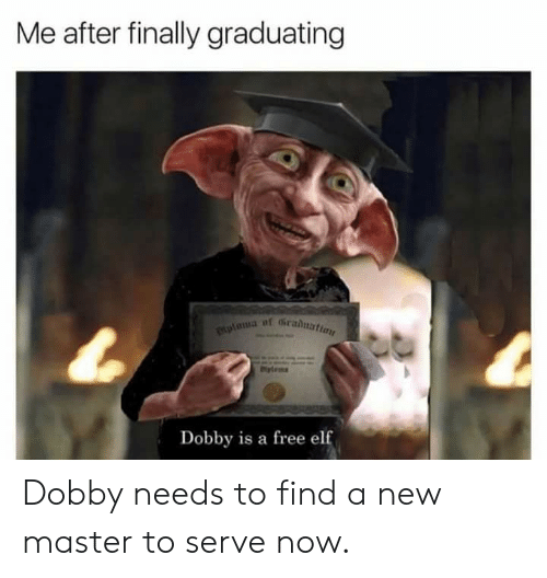 Elf, Reddit, and Free: Me after finally graduating  plama of Gradnattan  Dobby is a free elf Dobby needs to find a new master to serve now.