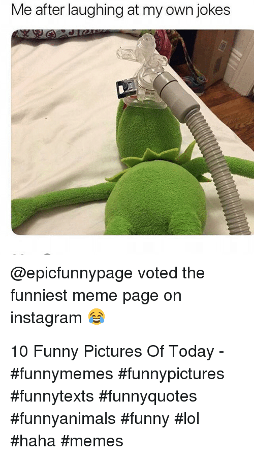 Funny, Instagram, and Lol: Me after laughing at my own jokes  @epicfunnypage voted the  funniest meme page on  instagram 10 Funny Pictures Of Today - #funnymemes #funnypictures #funnytexts #funnyquotes #funnyanimals #funny #lol #haha #memes