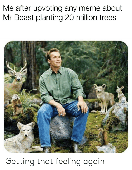 Meme, Trees, and Beast: Me after upvoting any meme about  Mr Beast planting 20 million trees Getting that feeling again