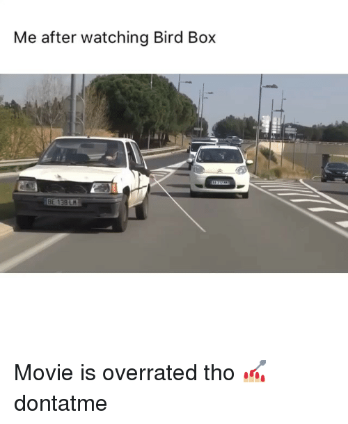Memes, Movie, and Overrated: Me after watching Bird Box  14312  BE 138 L Movie is overrated tho 💅🏼 dontatme