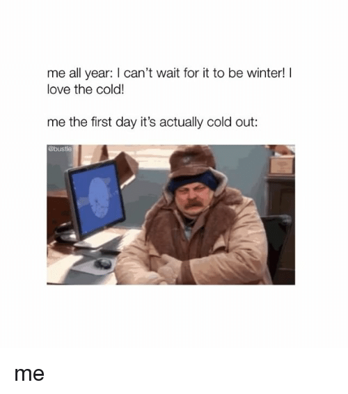 Love, Memes, and Winter: me all year: I can't wait for it to be winter!I  love the cold!  me the first day it's actually cold out:  @bustle me