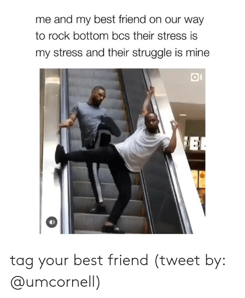 Best Friend, Struggle, and Best: me and my best friend on our way  to rock bottom bcs their stress is  my stress and their struggle is mine tag your best friend (tweet by: @umcornell)