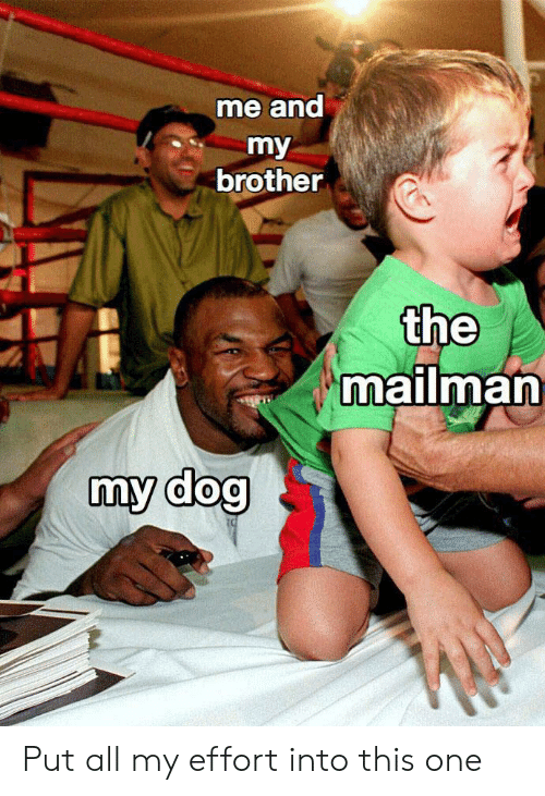 Dank Memes, Dog, and Brother: me and  my  brother  the  mailman  my dog Put all my effort into this one