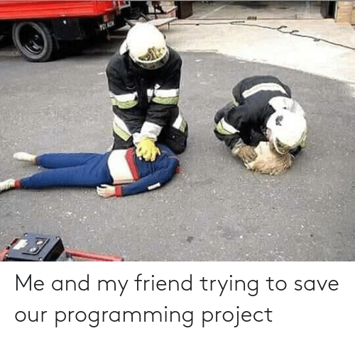 Programming, Project, and Friend: Me and my friend trying to save our programming project
