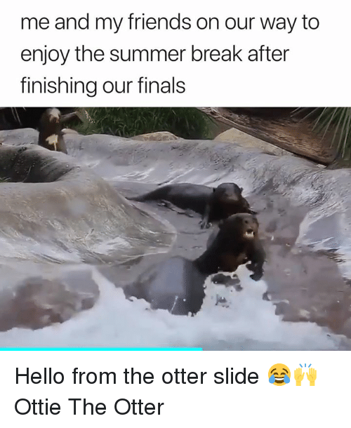 Finals, Friends, and Hello: me and my friends on our way to  enjoy the summer break after  finishing our finals Hello from the otter slide 😂🙌  Ottie The Otter