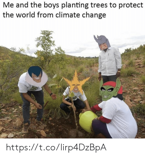 Memes, Trees, and World: Me and the boys planting trees to protect  the world from climate change https://t.co/lirp4DzBpA