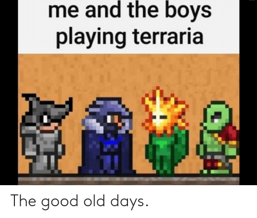 Me and the Boys Playing Terraria the Good Old Days | Good