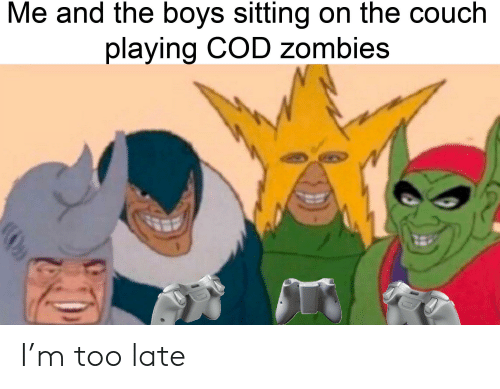 Me And The Boys Sitting On The Couch Playing Cod Zombies I M Too