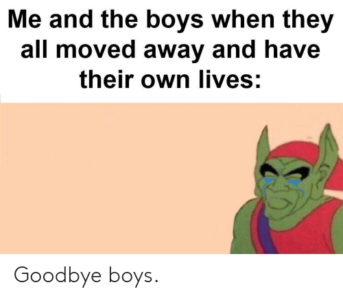 Boys, Own, and All: Me and the boys when they  all moved away and have  their own lives: Goodbye boys.