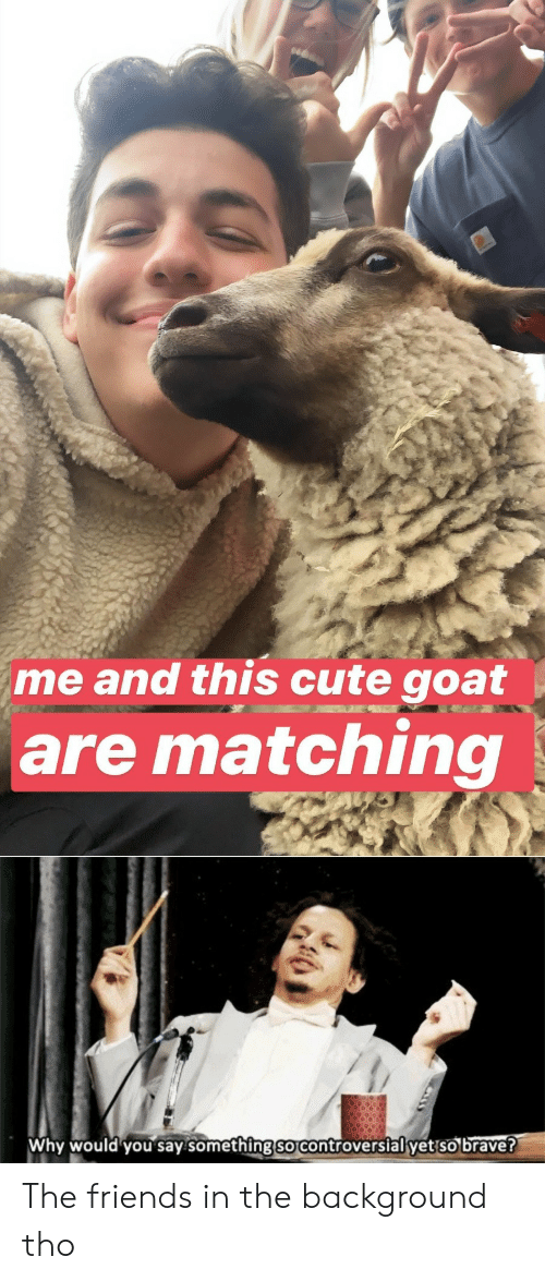 Cute, Friends, and Reddit: me and this cute goat  are matching  Why would you say something so controversial yet so brave? The friends in the background tho