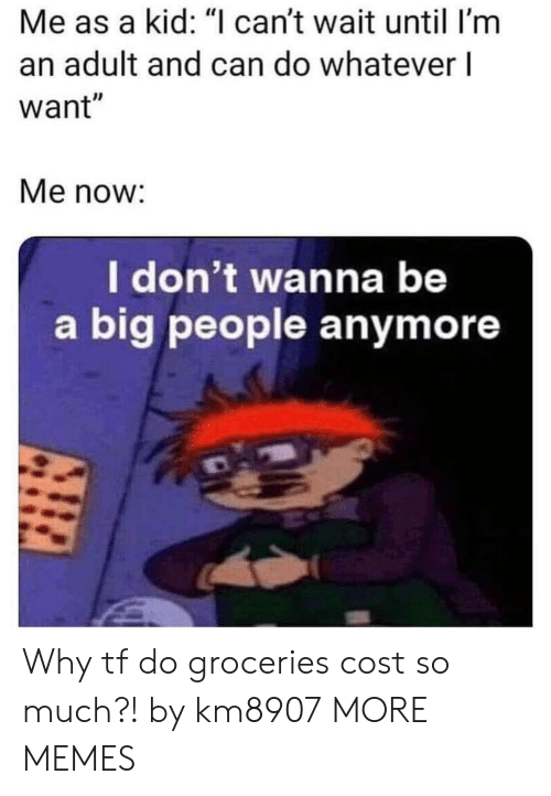 """Dank, Memes, and Target: Me as a kid: """"I can't wait until I'm  an adult and can do whatever l  want""""  Me now:  I don't wanna be  a big people anymore Why tf do groceries cost so much?! by km8907 MORE MEMES"""