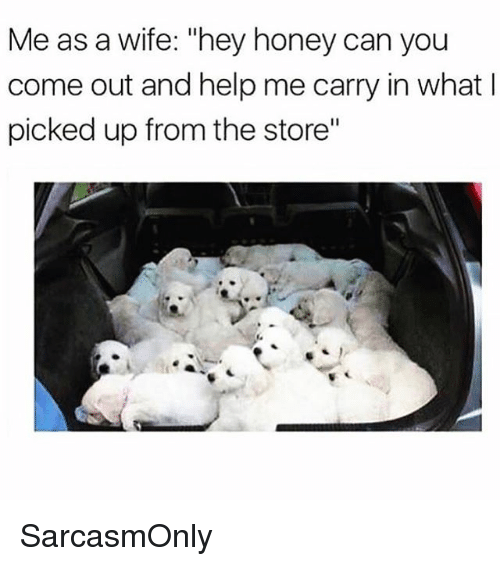 "Funny, Memes, and Help: Me as a wife: ""hey honey can you  come out and help me carry in what l  picked up from the store"" SarcasmOnly"