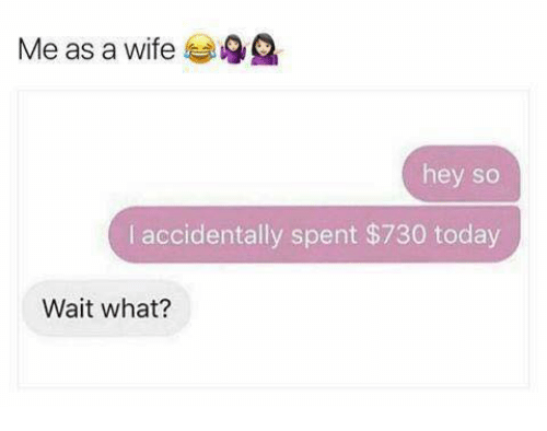Today, Wife, and What: Me as a wife  hey so  I accidentally spent $730 today  Wait what?
