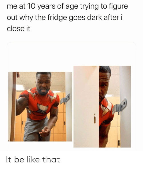 Be Like, Dark, and Fridge: me at 10 years of age trying to figure  out why the fridge goes dark after i  close it It be like that