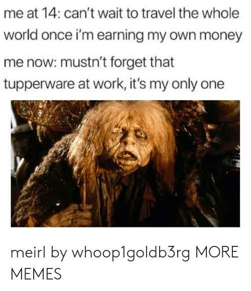Dank, Memes, and Money: me at 14: can't wait to travel the whole  world once i'm earning my own money  me now: mustn't forget that  tupperware at work, it's my only one meirl by whoop1goldb3rg MORE MEMES