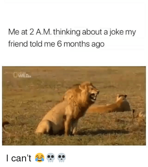 Funny, Can, and Friend: Me at 2 A.M. thinking about a joke my  friend told me 6 months ago I can't 😂💀💀