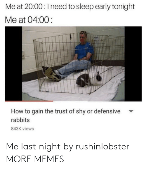 Dank, Memes, and Target: Me at 20:00: Ineed to sleep early tonight  Me at 04:00  How to gain the trust of shy or defensive  rabbits  843K views Me last night by rushinlobster MORE MEMES