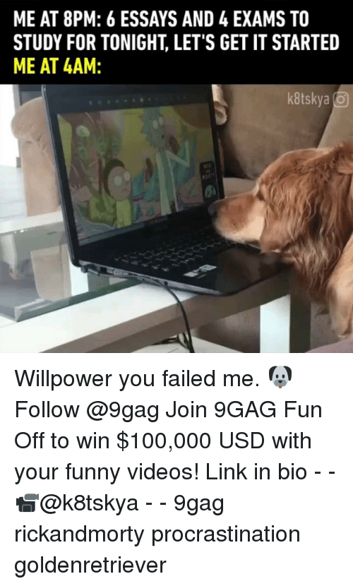 9gag, Anaconda, and Funny: ME AT 8PM: 6 ESSAYS AND 4 EXAMS TO  STUDY FOR TONIGHT, LET'S GET IT STARTED  ME AT 4AM  kitskya Willpower you failed me. 🐶 Follow @9gag Join 9GAG Fun Off to win $100,000 USD with your funny videos! Link in bio - - 📹@k8tskya - - 9gag rickandmorty procrastination goldenretriever