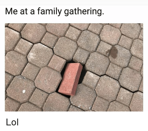 Family, Lol, and Memes: Me at a family gathering Lol