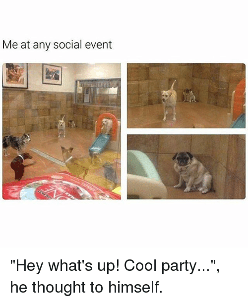 """Memes, Party, and Cool: Me at any social event """"Hey what's up! Cool party..."""", he thought to himself."""