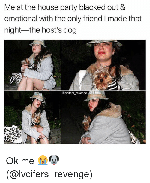 Memes, Party, and Revenge: Me at the house party blacked out &  emotional with the only friend I made that  night-the host's dog  @lvcifers revenge Ok me 😭🐶 (@lvcifers_revenge)