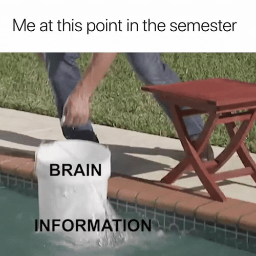 Brain, Information, and This: Me at this point in the semester  BRAIN  INFORMATION