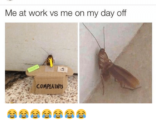 25+ Best Memes About Day Off | Day Off Memes